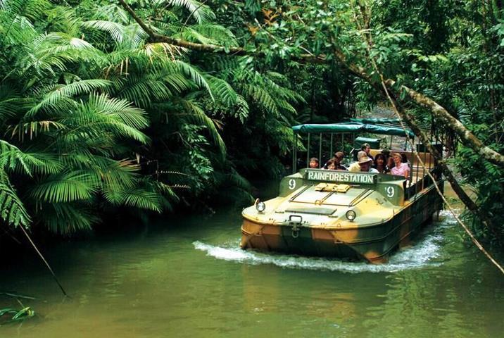 库兰达热带雨林2