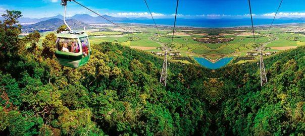 库兰达热带雨林-min