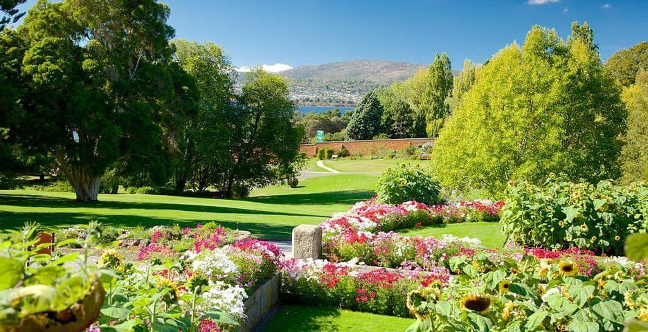 霍巴特皇家植物园-min